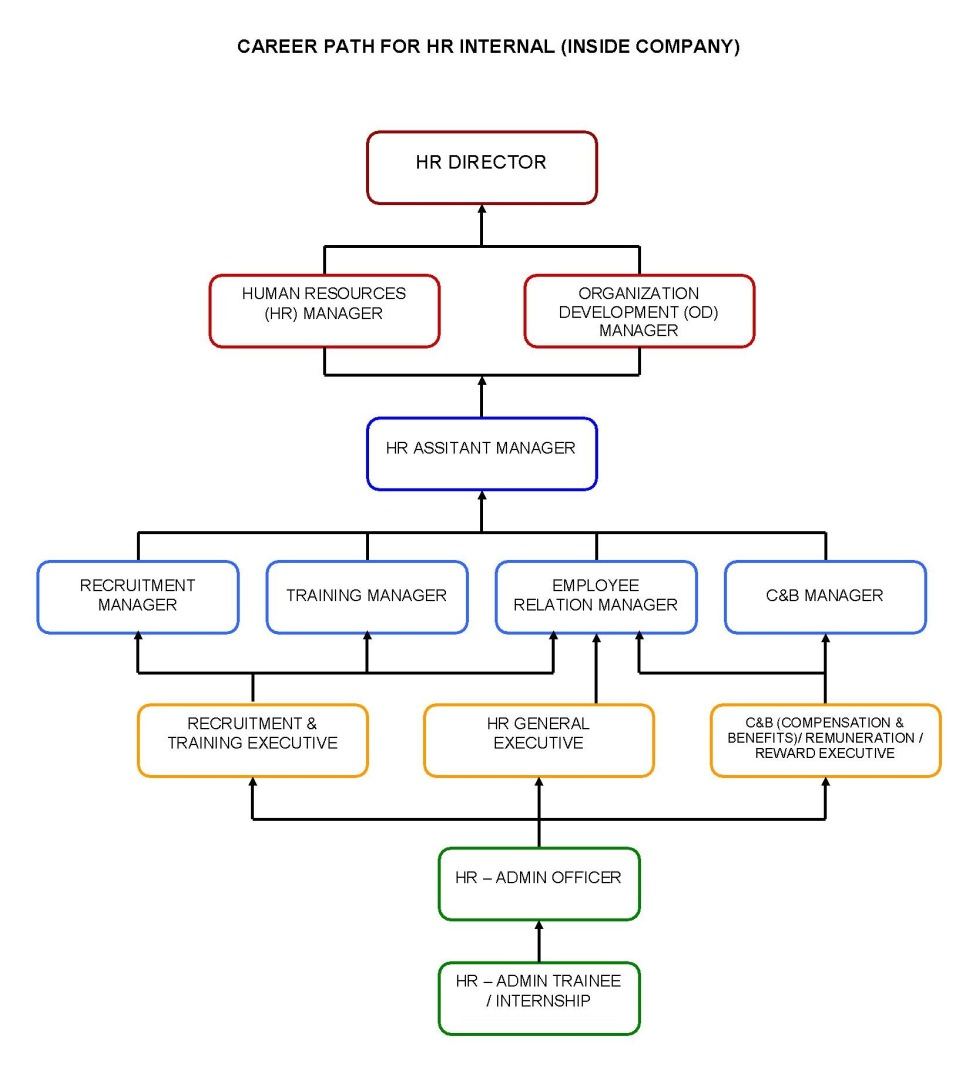 Example of career paths for a career pathing program.